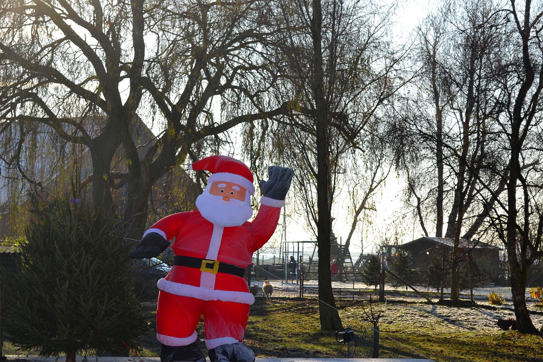 Nordmann Excellent kerstbomen Aalsmeer