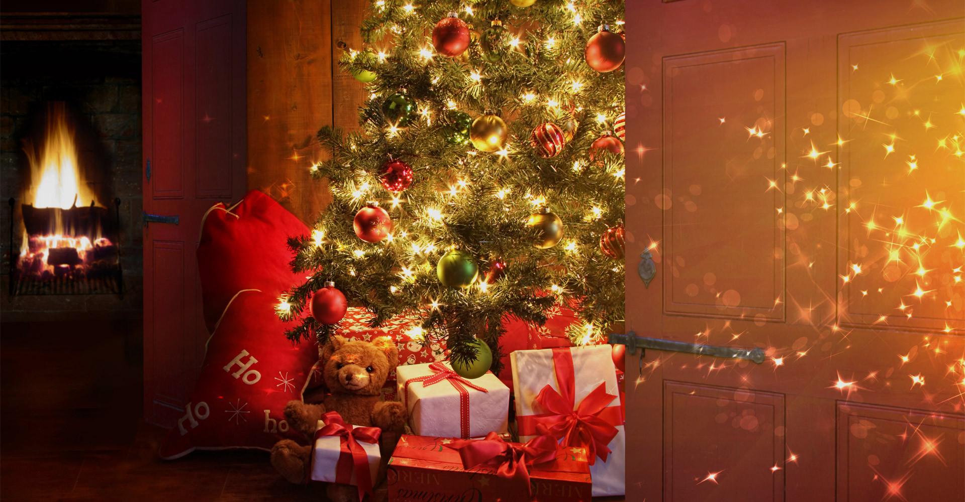 De mooiste Nordmann Excellent kerstbomen in Aalsmeer vanaf € 15,-
