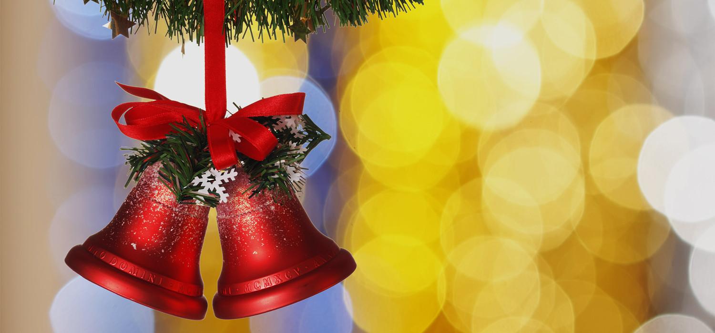 Veelgestelde vragen over Nordmann Excellent kerstbomen in Aalsmeer